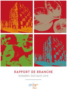 RapportBranche2016_DonneesSociales2015