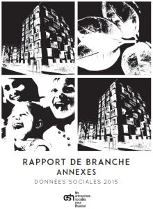 RapportBranche2016_DonneesSociales2015_Annexes